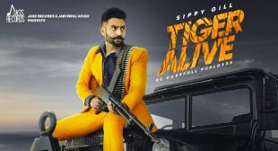 Tiger Alive Lyrics – LyricsBELL
