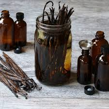High quality Vanilla beans for extract recipe