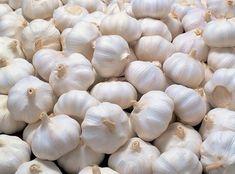 Garlic Suppliers Deal with Both Softneck & Hardneck Varieties of Garlic